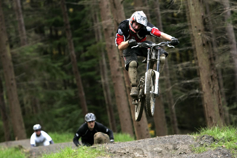 Hamsterley Forest - a great place to go to bike, to walk, to picnic - from Dowfold House Bed and Breakfast